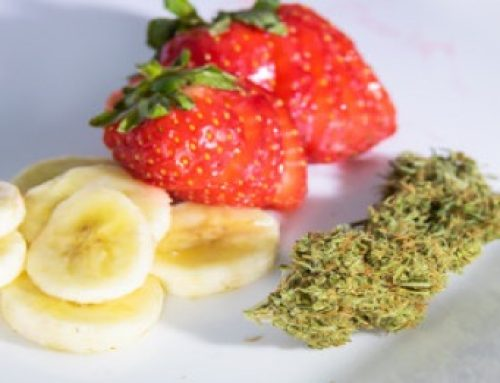 What Are Terpenes And What Are Their Benefits