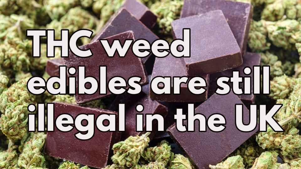 weed edible