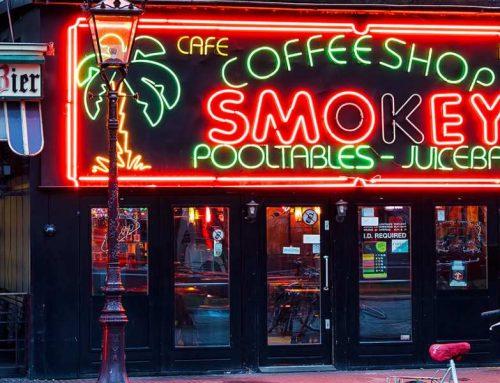 Top 5 Amsterdam Coffeeshops of 2021