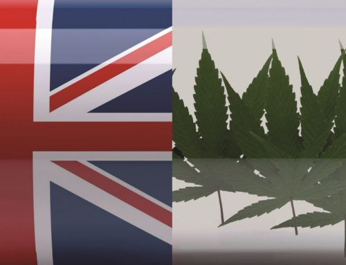 What Would the UK Be Like If Cannabis Was Legalized?